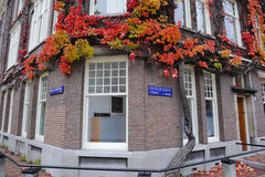 Улица Амстердам Стоковое фото RF