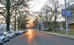 Улица бежать вдоль университета Мемфиса Стоковая Фотография