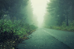 Улица в темном лесе с milky туманом и тенями Стоковые Изображения