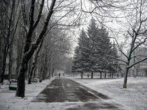 Улица в хмуром дне осени Стоковые Фотографии RF