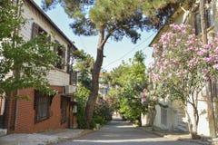 Улица в Heybeliada, Стамбуле, Турции Стоковое фото RF