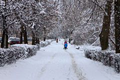 Улица города Snowy стоковые фото