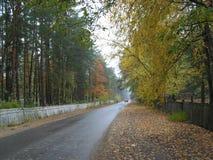 Улица деревни в осени стоковая фотография rf