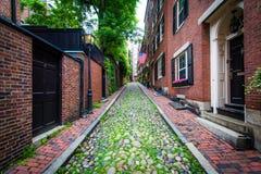 Улица жолудя, в холме маяка, Бостон, Массачусетс Стоковые Изображения RF
