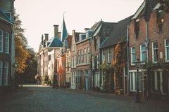 Улица Нидерланды Лейдена стоковые фотографии rf