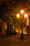 Улица ночи в Риге под яркими светами в осени Стоковые Изображения RF