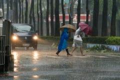 Улица скрещивания пешеходов во время тайфуна Megi Стоковые Изображения RF