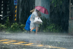 Улица скрещивания пешеходов во время тайфуна Megi Стоковое фото RF