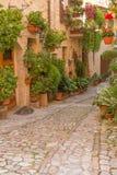 Улица цветка в Spello (Умбрии, Италии) Стоковое Изображение