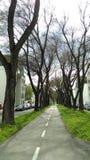 улица Стоковая Фотография