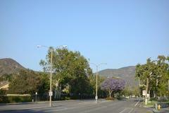 Улица Adolfo, Camarillo, CA Стоковые Фото