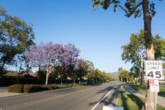 Улица Adolfo, Camarillo, CA Стоковое Изображение RF