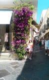 Улица Kapri Стоковое Изображение