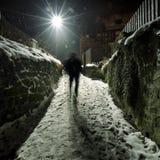 Улица Snowy Стоковые Изображения