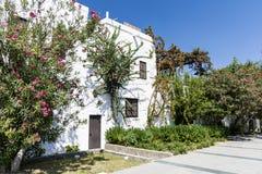 Улица Tipical турецкая с Белым Домом и бугинвилией цветет стоковое фото rf