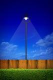 Уличное освещение с кустарником Стоковая Фотография
