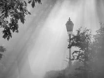 Уличный фонарь в тумане стоковое изображение