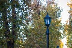 Уличный фонарь против деревьев Стоковые Изображения