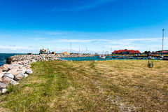 Удобный пляж Балтийского моря с утесами и зеленым vegetat Стоковое Изображение RF