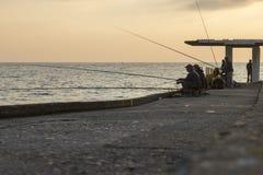 уловите рыболовов рыб удя вне штанги тростников пруда вставляя 3 Стоковое Изображение RF