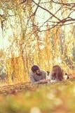 Удовольствие осени Стоковое Фото
