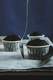 Удовольствие шоколада Стоковые Фото
