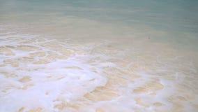 Улучшите белый чистый песок помытый сверх океанской волной сток-видео