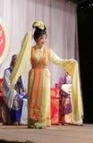 Улыбка актрисы второго плана, тишины тайваньской оперы jinyuliangyuan стоковое фото rf
