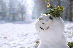 Улыбка зима Стоковые Фото