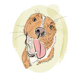 Улыбка собаки drawb руки красная Стоковое Изображение