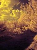 Ультракрасная фотография южной горы Ural стоковые изображения rf