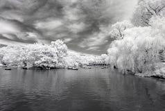 Ультракрасное изображение Central Park Стоковая Фотография