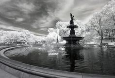 Ультракрасное изображение Central Park Стоковые Фото