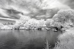 Ультракрасное изображение Central Park Стоковое фото RF
