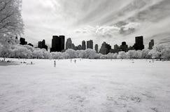 Ультракрасное изображение Central Park Стоковые Фотографии RF