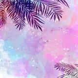 Ультрамодная розовая голубая тропическая предпосылка, листья, ладонь кокоса стоковое фото rf