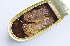 Удя крюк и рыбы задвижки сети зажаренные солью в олове законсервированном на белой предпосылке Стоковые Фото