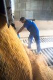 Фабрика корма для животных стоковые изображения rf