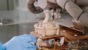Фабрика масла гайки - завалка участка Сливк гайки кладет в стеклянные опарникы, конец-вверх видеоматериал