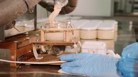 Фабрика масла гайки - завалка участка Сливк гайки кладет в стеклянные опарникы, конец-вверх сток-видео