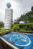 Фабрика чая Культивирование чая Стоковое фото RF