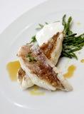 Файл рыб стоковое изображение