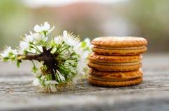 Файлы Cookies стоковые изображения rf