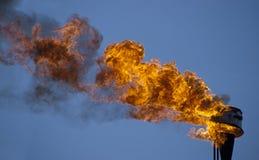 Факел пламени Стоковые Фото