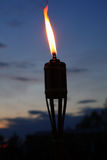 факел Стоковые Фотографии RF