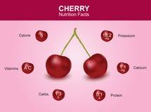 Факты питания вишни, плодоовощ вишни с информацией, вектором вишни Стоковые Фото