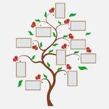 Фамильное дерев дерево, фото в пределах 7, родители дедов и иллюстрация штока