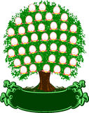 фамильное дерев дерево цвета Стоковое Изображение
