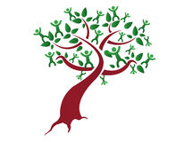 фамильное дерев дерево Стоковые Изображения