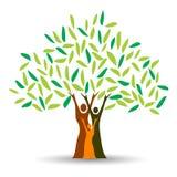 фамильное дерев дерево Стоковые Фотографии RF